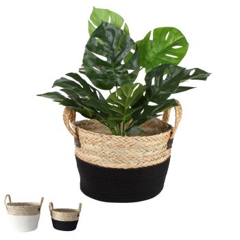 Miranda Seagrass Baskets with Handles Set of 2